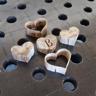 campioni di taglio su legno fossile