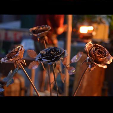 rose in ferro 750 x 750